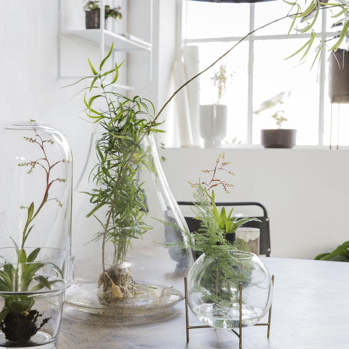 """Vase """"Terrarium"""""""