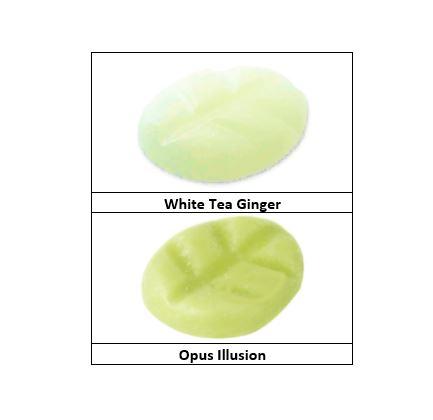 """""""Opus Illusion & White Tea Ginger"""""""