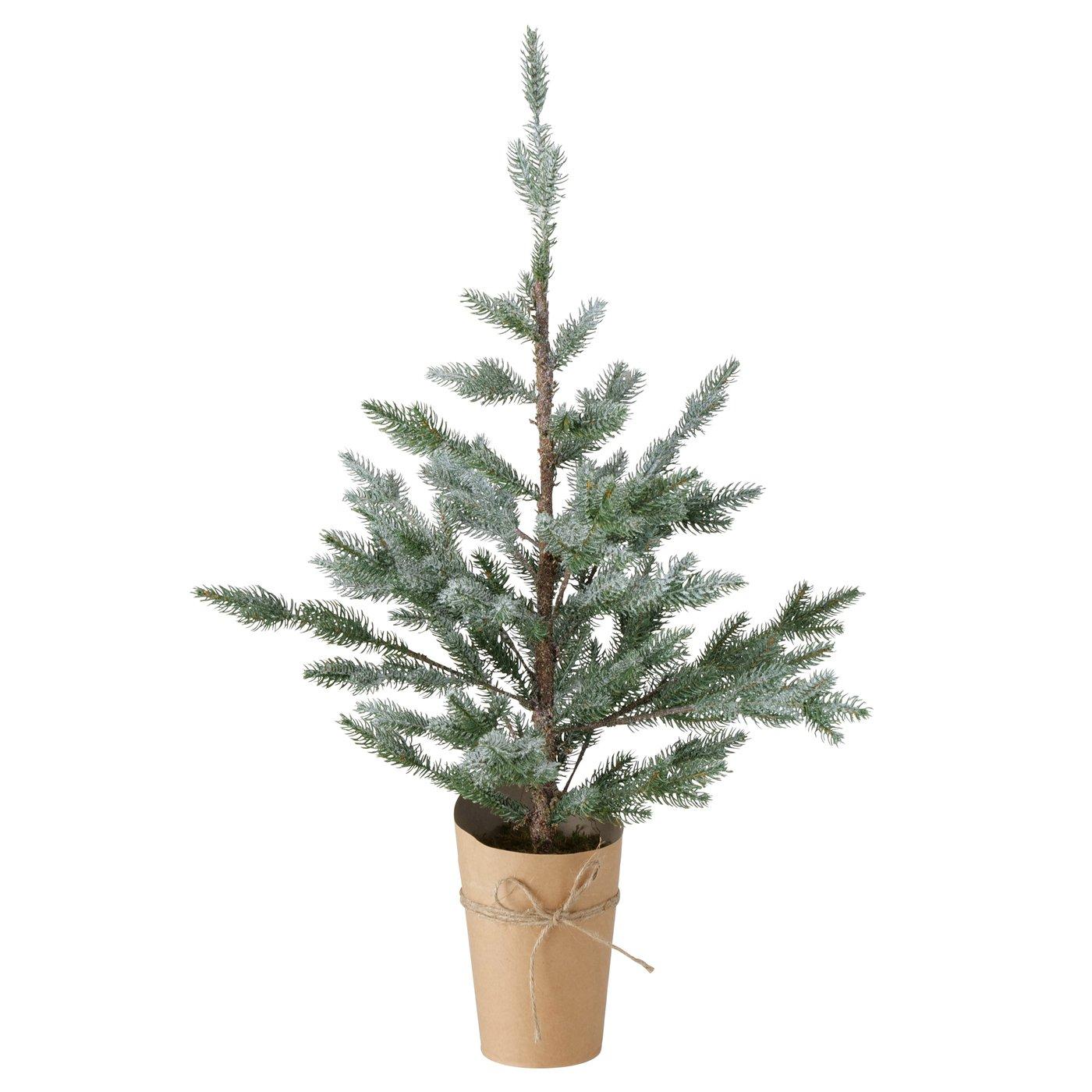 """Weihnachtsbaum """"Thorus"""""""