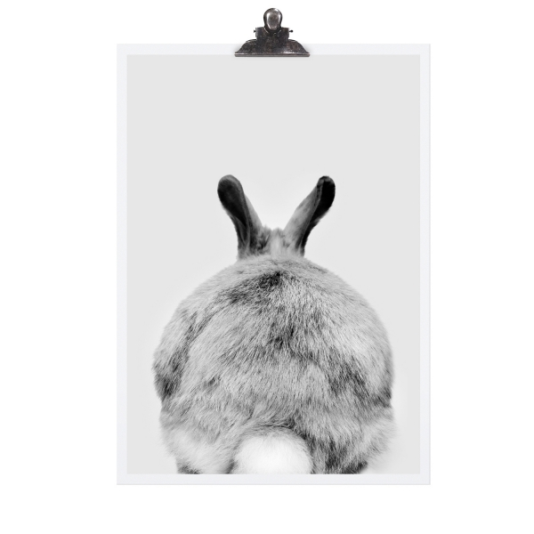 "Poster ""Rabbit"""